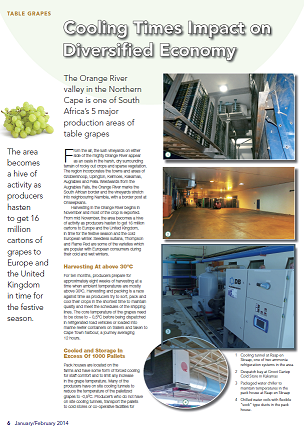 Grape Cooling Industry